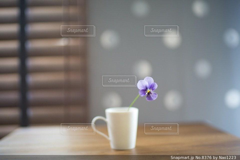 花の写真・画像素材[8376]