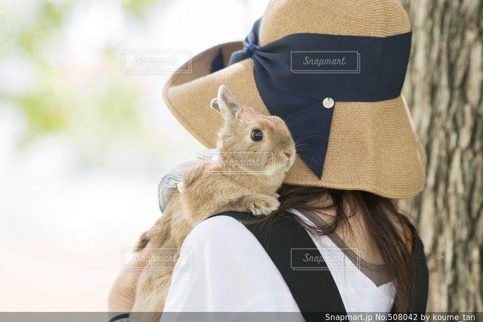 動物の写真・画像素材[508042]