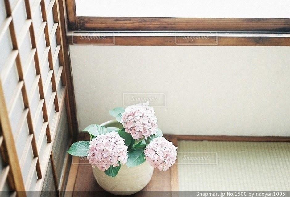No.1500 花