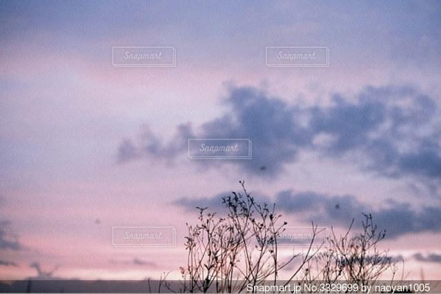 ある日の夕焼けの写真・画像素材[3329699]