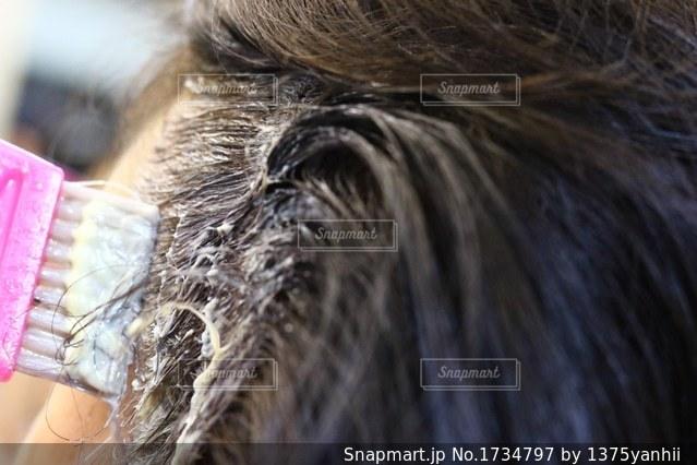 近くにいくつかの髪のアップの写真・画像素材[1734797]