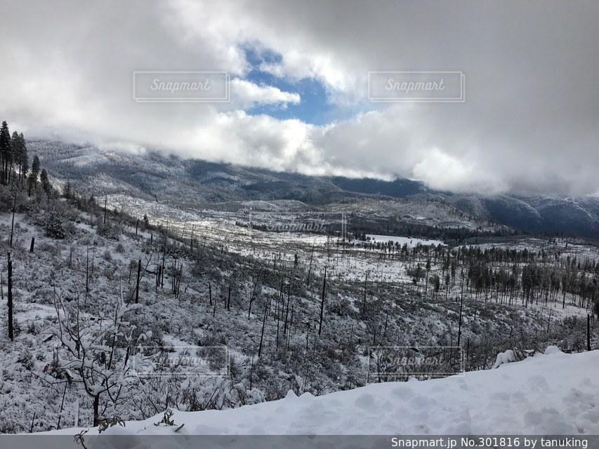冬の写真・画像素材[301816]