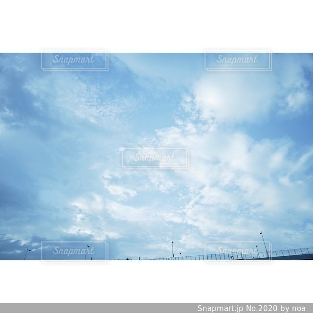 自然の写真・画像素材[2020]