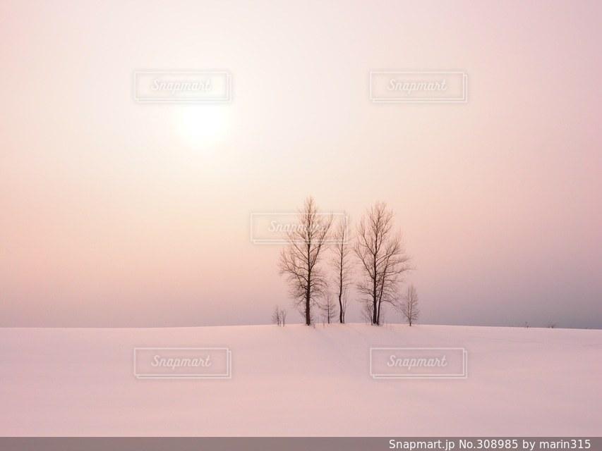 冬 - No.308985
