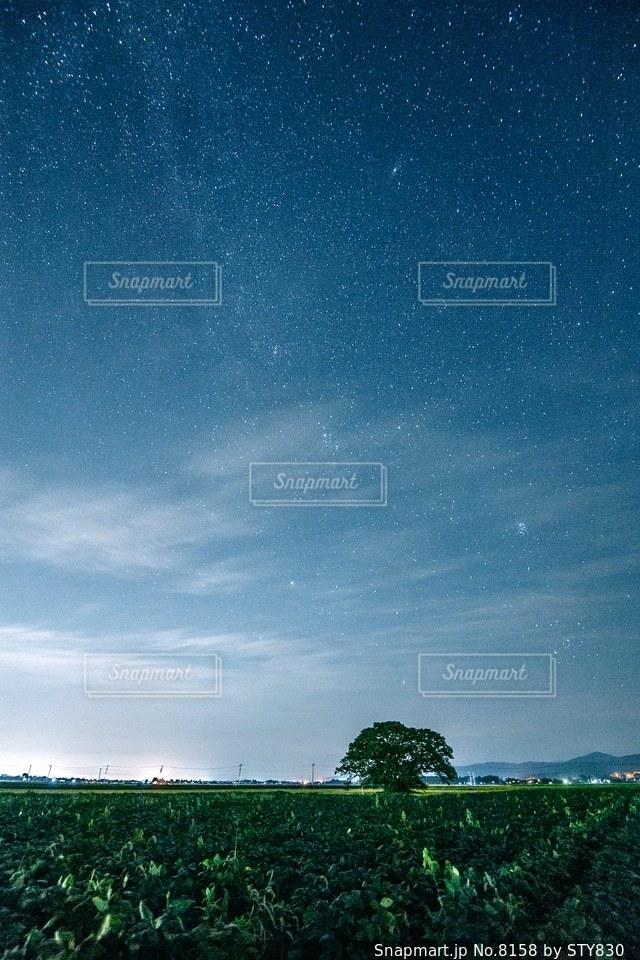 自然の写真・画像素材[8158]