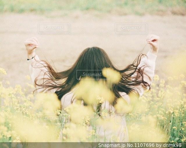 菜の花畑と女の子の写真・画像素材[1107696]