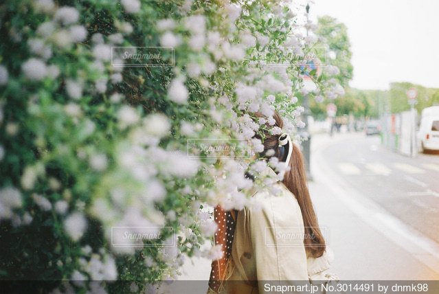 ロングヘアーとお花の写真・画像素材[3014491]