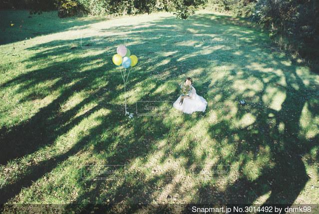 ウェデングドレスと木漏れ日の写真・画像素材[3014492]