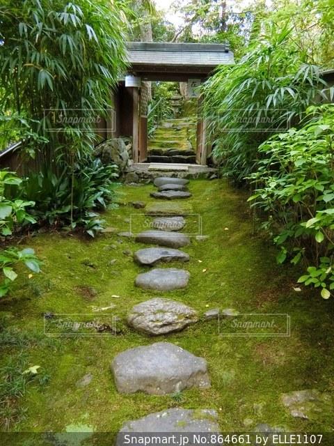 日本庭園へ続く飛び石の写真・画像素材[864661]