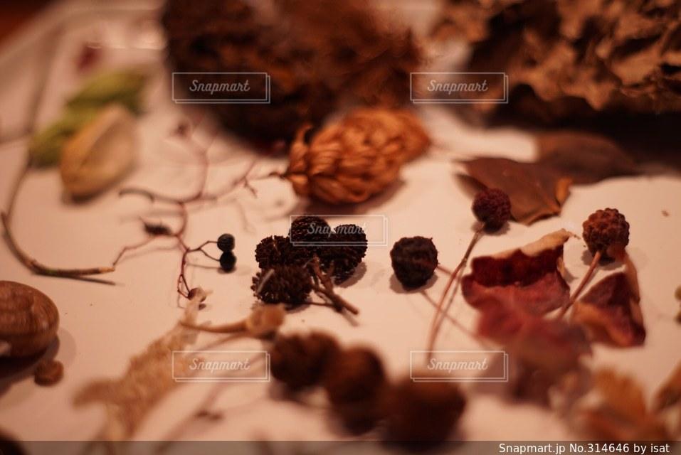 秋の写真・画像素材[314646]