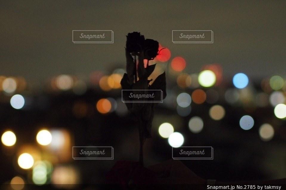 夜の写真・画像素材[2785]