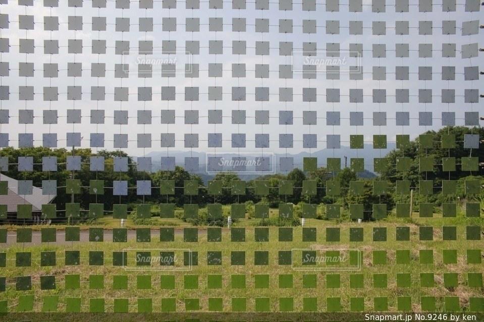 自然の写真・画像素材[9246]