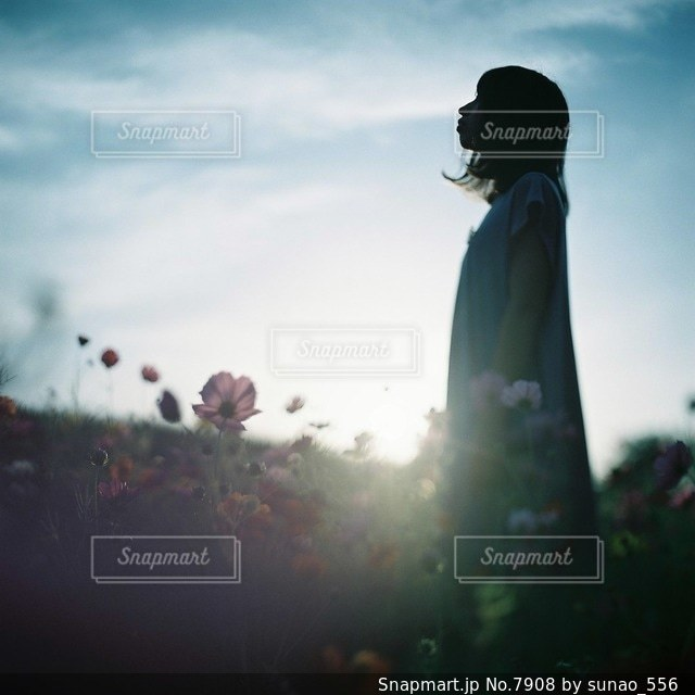 女性の写真・画像素材[7908]