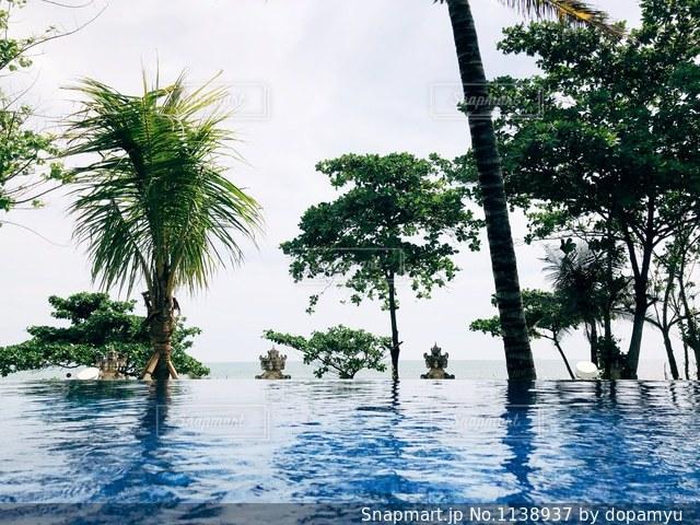 バリ ホテルのプールの写真・画像素材[1138937]