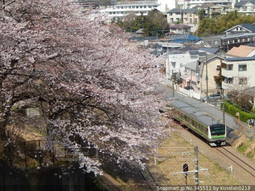 春,桜,街並み,鉄道,春風にのって