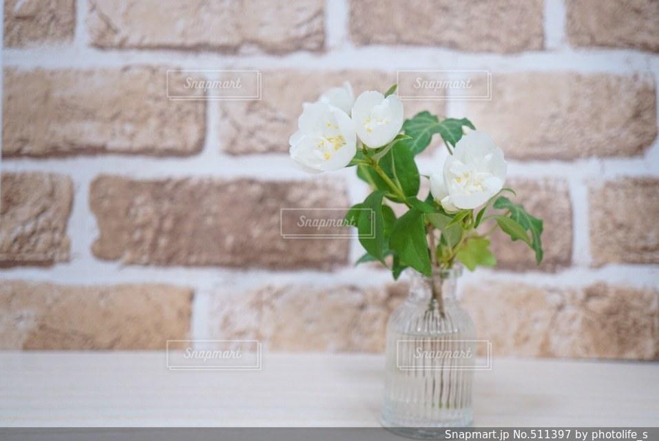 花の写真・画像素材[511397]