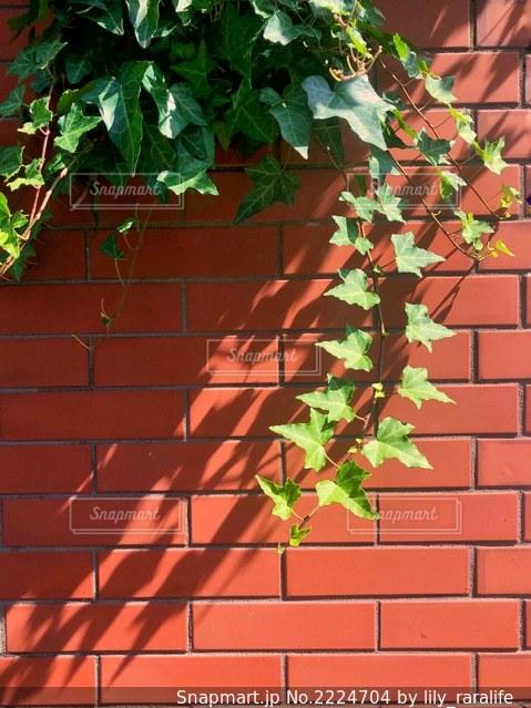 レンガ造りの建物の写真・画像素材[2224704]