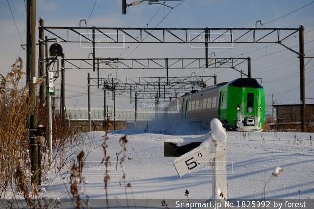 雪中列車の写真・画像素材[1825992]