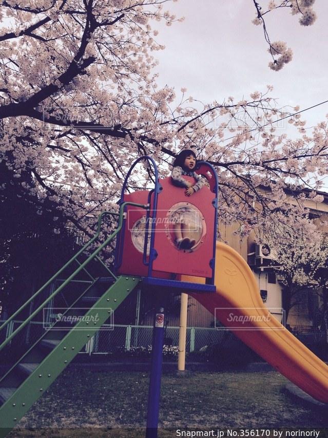 空,公園,春,桜,子供,すべり台,入学