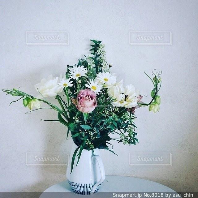 花の写真・画像素材[8018]