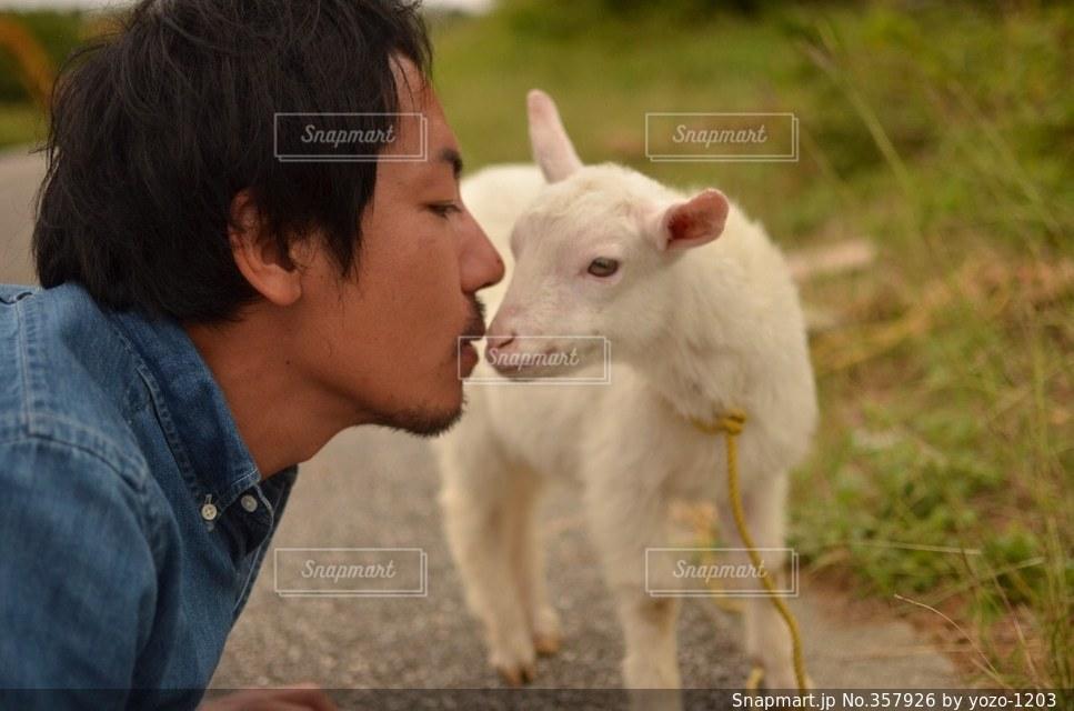 動物,イケメン,沖縄,キス,ヤギ,山羊,離島,波照間,波照間島のヤギ