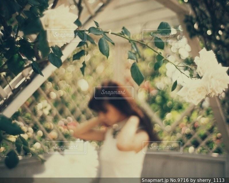 女性の写真・画像素材[9716]