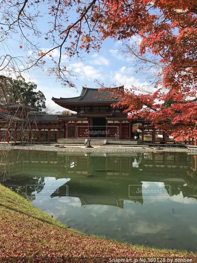 風景,京都,神社,晴れ,観光,旅行,平等院,修学旅行,宇治