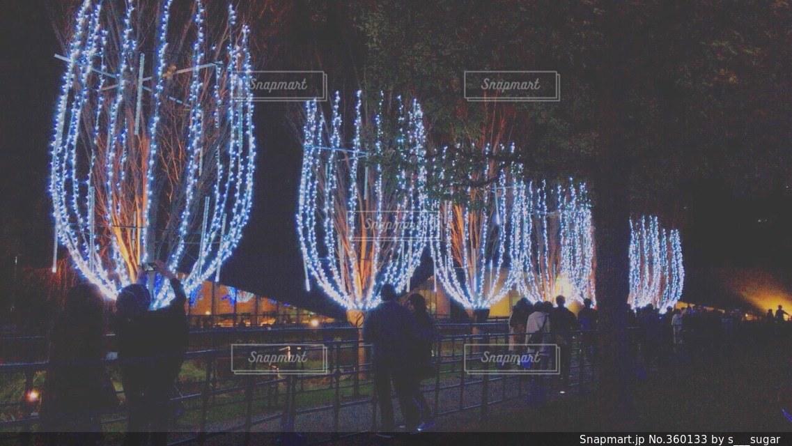 夜景,景色,イルミネーション,六本木,東京ミッドタウン