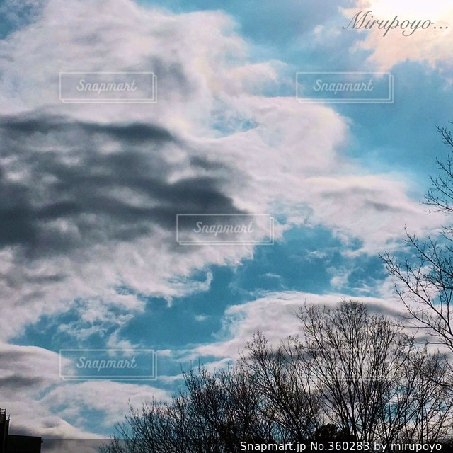 空,散歩,休日,晴れた日,見上げると