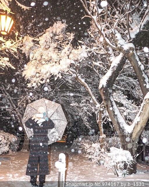 四年ぶりの大雪にはしゃいだ夜の写真・画像素材[974167]