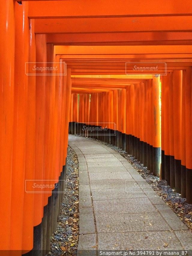 京都,赤,鳥居,伏見稲荷,朱色