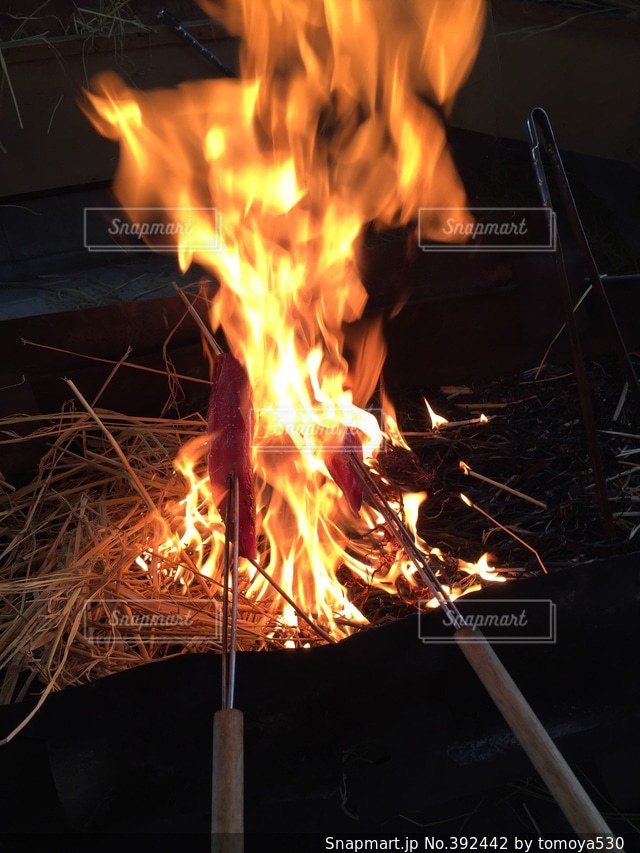 炎の写真・画像素材[392442]