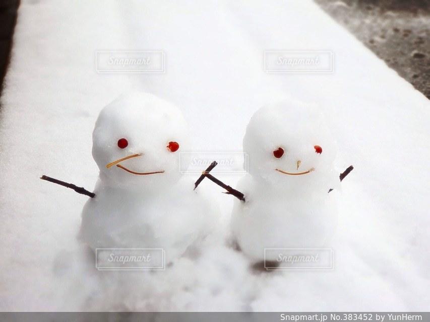 冬の写真・画像素材[383452]