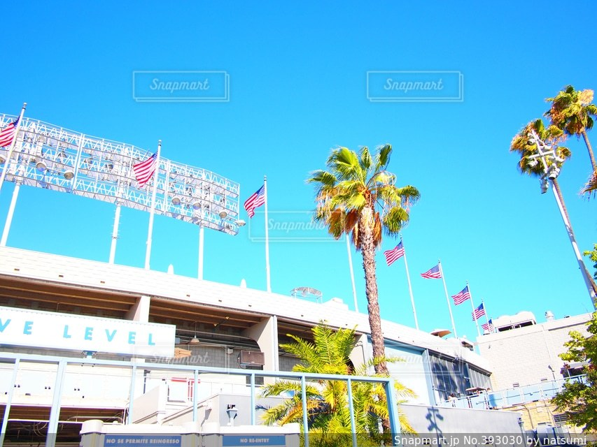 空,スポーツ,アメリカ,国旗,ヤシの木,LA,ロサンゼルス,野球,スタジアム,球場,西海岸,カリフォルニア,パームツリー,野球場,California,I♡LA,アメリカ西海岸,MLB,baseball,ロス,Los Angeles,palm tree,ロスアンゼルス,ドジャースタジアム,アメリカ国旗,WBC,Dodger's Stadium,Dodger Stadium