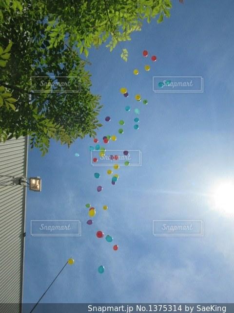 空に凧の飛行の人々 のグループの写真・画像素材[1375314]