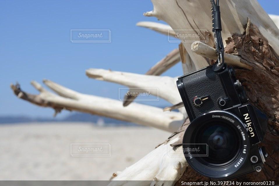 海,白,青,爽やか,キラキラ,フィルム,流木,爽快,Nikon,フィルムカメラ,ニコン