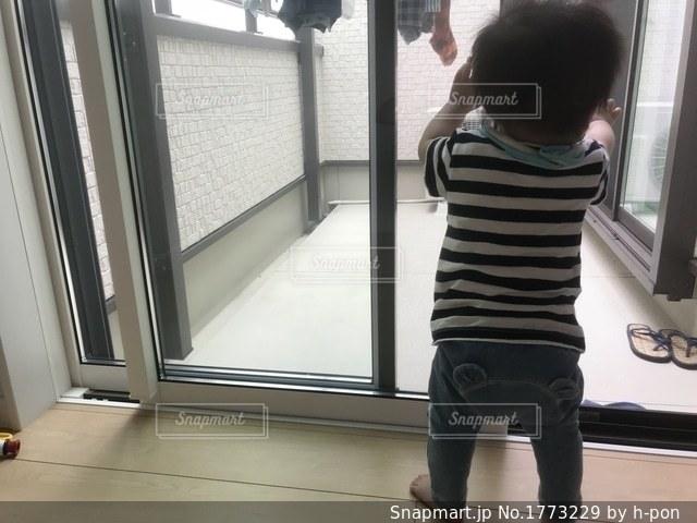 洗濯中の赤ちゃんの写真・画像素材[1773229]