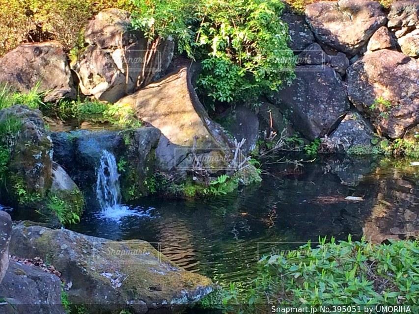 公園,水,水辺,夕方,滝,庭園,隠れ家,埼玉,氷川神社,大宮公園