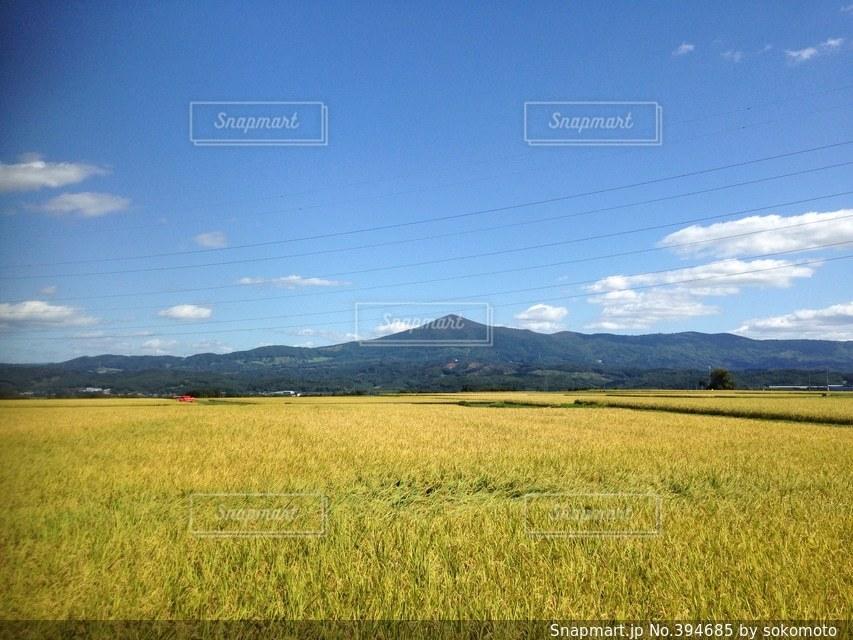 風景,晴れ,田舎,山,景色,田園,米,農業,帰省,のどか,故郷,ふるさと