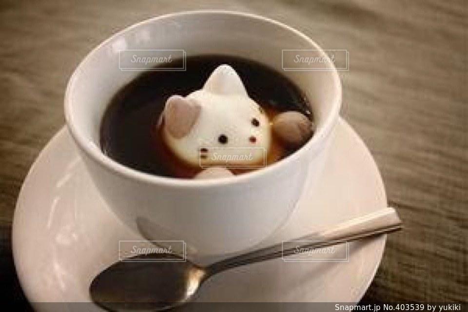 猫,カフェ,コーヒー,ねこ,可愛い