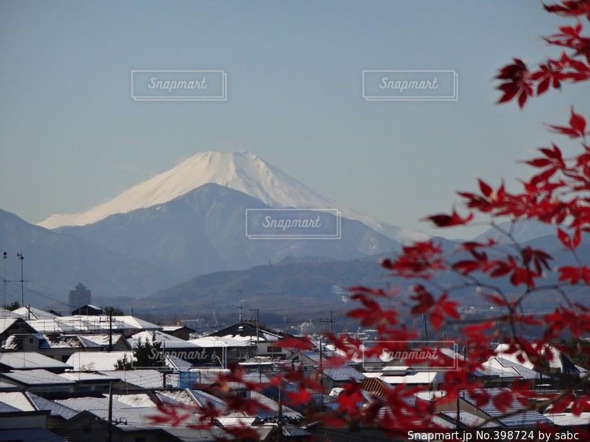 富士山,紅葉,雪