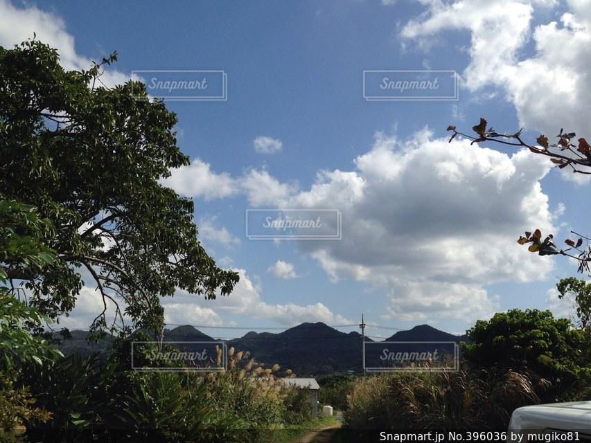 沖縄,山,景色,癒し