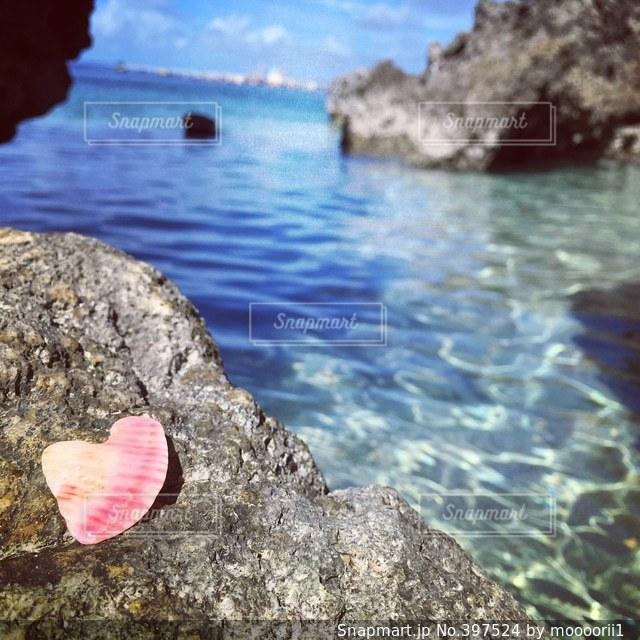 海,貝殻,沖縄,ハート,キラキラ
