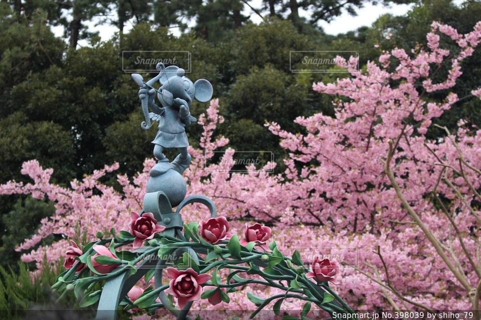 春,桜,ピンク,可愛い,キャラクター,井戸,ディズニー,一眼レフ,ミニーマウス,ミニーちゃん,ミニーちゃんのお家
