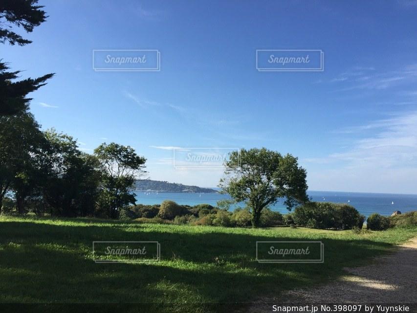 自然,緑,青空,ヨーロッパ,大西洋,フランス南西部,海の前