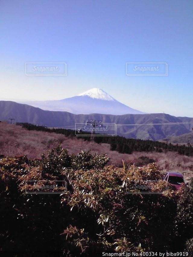 風景,冬,富士山