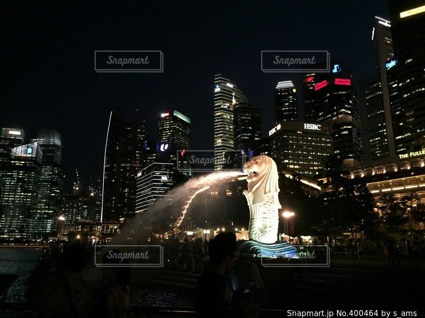 夜,夜景,観光地,キラキラ,マーライオン,シンガポール,有名,人気スポット