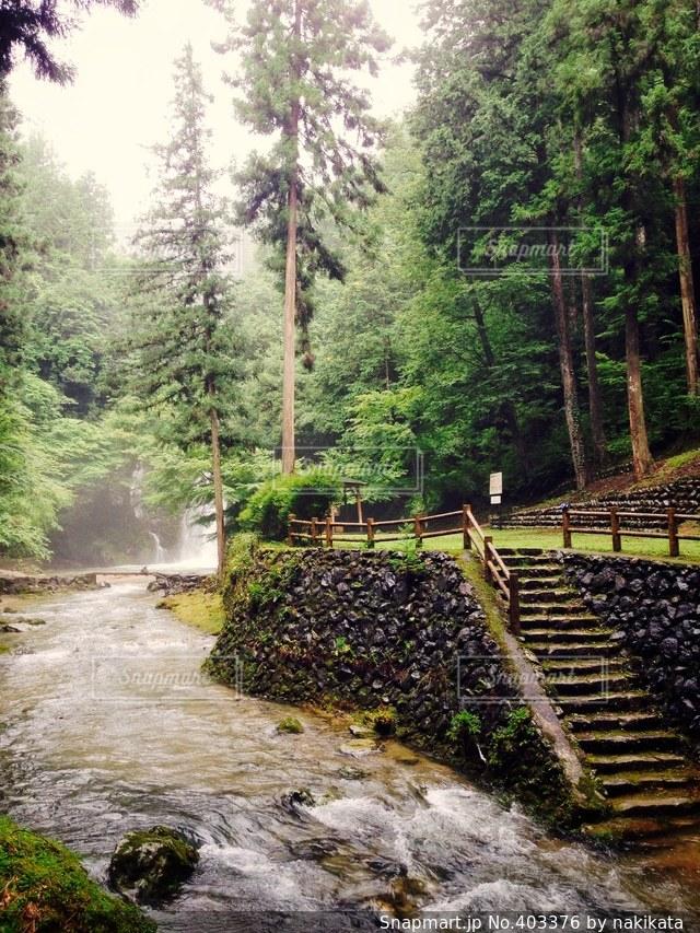 自然,夏,滝,青春,思い出,岐阜,リフレッシュ,穴場,洗礼