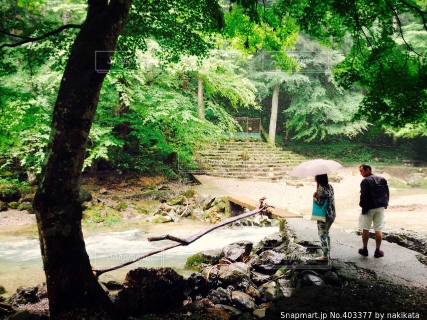 自然,夏,滝,旅行,思い出,岐阜,リフレッシュ,息抜き,穴場,新しい道,洗礼