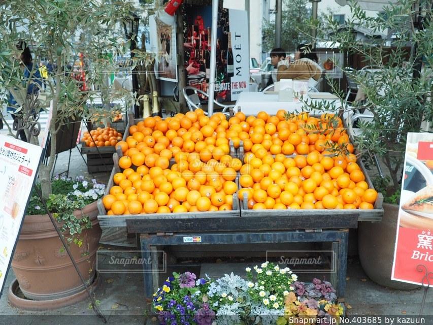 カフェ,世界遺産,オレンジ,フルーツ,果物,平和記念公園,広島,平和公園